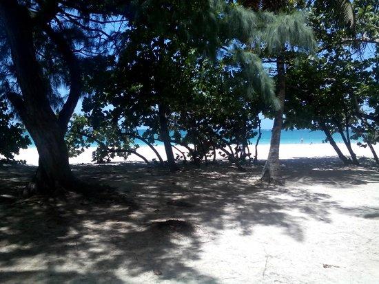 Doubletree by Hilton San Juan: Ocean Beach