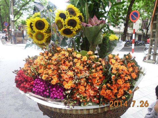 Skylark Hotel: Beautiful Flower for Sale