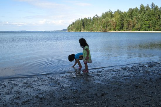 Penrose Point State Park : Nieces playing at the beach