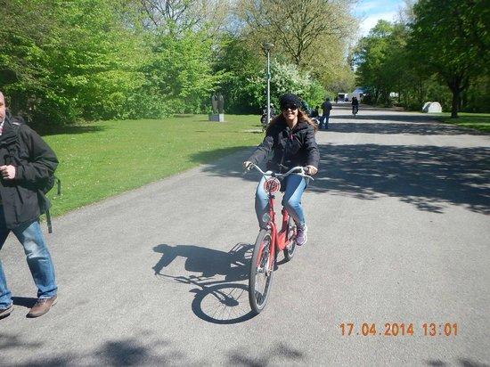 Mike's Bike Tours & Rentals: parques