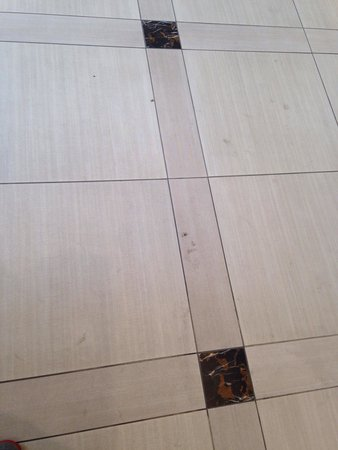 Fairfield Inn & Suites New York Midtown Manhattan/Penn Station : Dirty floors