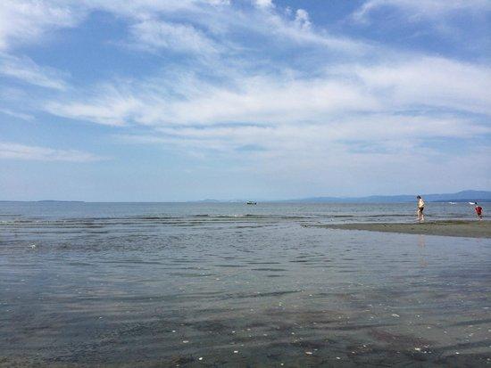 Qualicum Beach Inn: Sitting down at the beach - Love it!