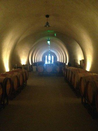 Hamel Family Wines: cave