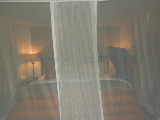 Inyati Game Lodge : Our fairytale bed everynight with treats and bedtime stories!
