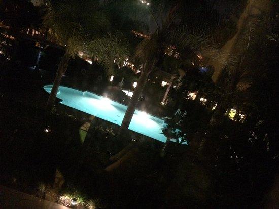 Hilton Garden Inn LAX/El Segundo : Vu sur la piscine