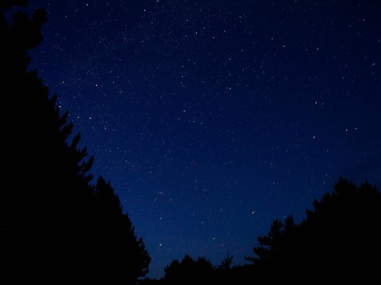 Kiosk Campground: star viewing at night time