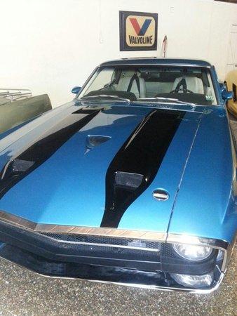 Sarasota Classic Car Museum: Gt 350