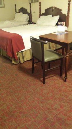 Americana Inn & Suites: Look at this dirty rug