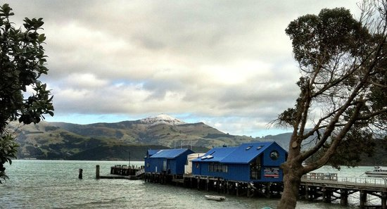 Bruce Waterfront Apartments: Akaroa Wharf