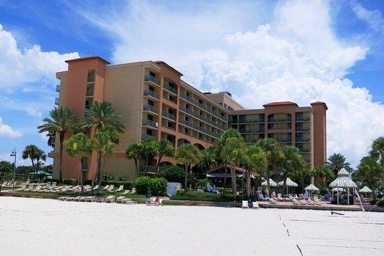 Sheraton Sand Key Resort : Resort from the beach (back).