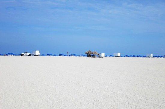 Sheraton Sand Key Resort: Lots of white beach...