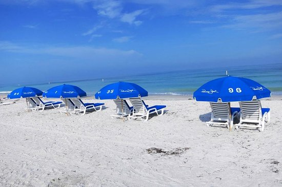 Sheraton Sand Key Resort: These are the umbrella's and chairs you can rent for 25