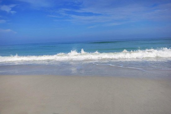 Sheraton Sand Key Resort: Great shot of the beach that you get to enjoy!