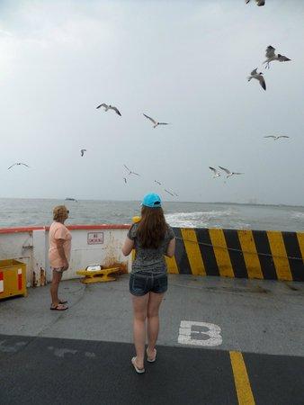 Galveston - Port Bolivar Ferry: Ferry Ride