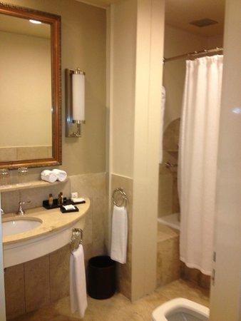Plaza Hotel Buenos Aires: Bathroom