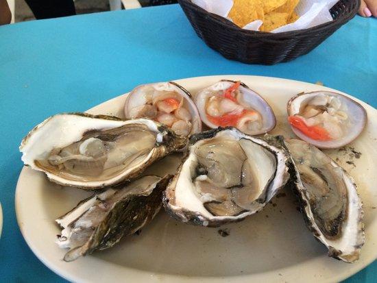 Mariscos la Palmita: oyesters and clams