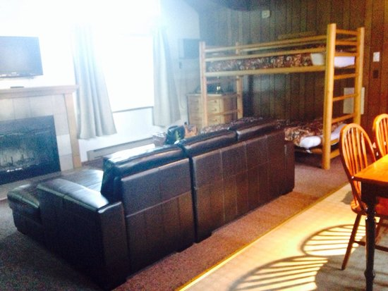 Mountain View Lodge: Unit 15 A-FRAME. Blinded by the light! Flat screen TV above fireplace. Nice couch.