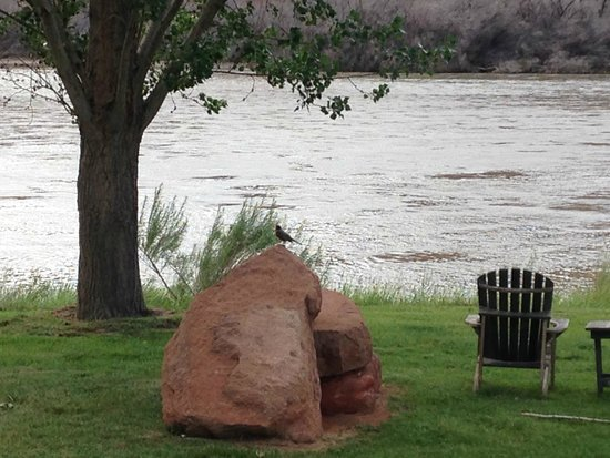 Sorrel River Ranch Resort and Spa: sitting by the river