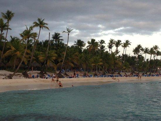 Catalonia Gran Dominicus : Beach Area
