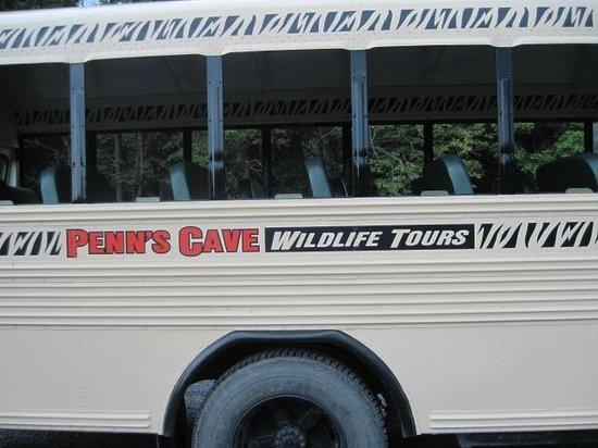 Penn's Cave : Wildlife tour bus