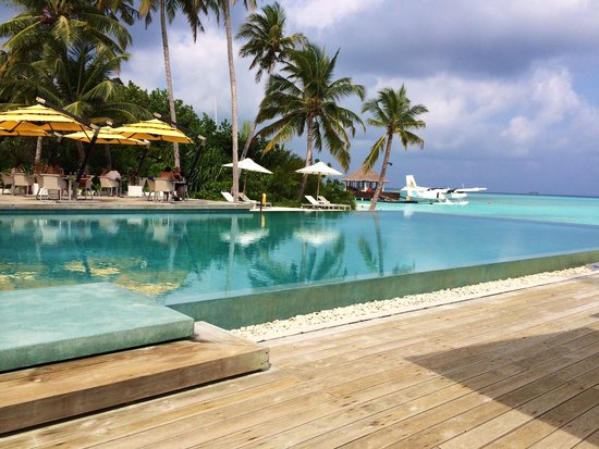 Niyama Private Islands Maldives: Most luxurious accomadations coupled with unbelievable food.