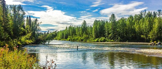 Alaska Fishing Lodge - Wilderness Place Lodge : Living the dream... fishing Alaska!