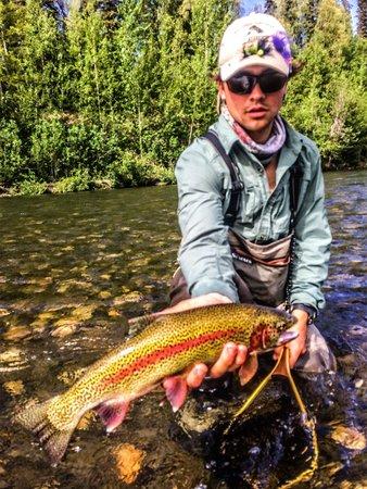 Alaska Fishing Lodge - Wilderness Place Lodge : Fishing Alaska rainbow trout in July