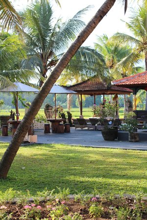 Green Field Hotel and Bungalows : gardens near pool and restaurant