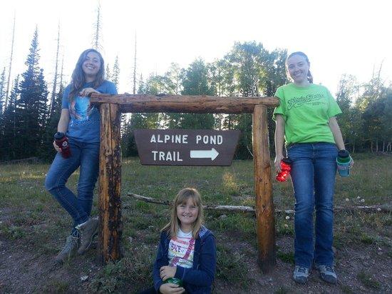 Cedar Breaks National Monument : At Cedar Breaks