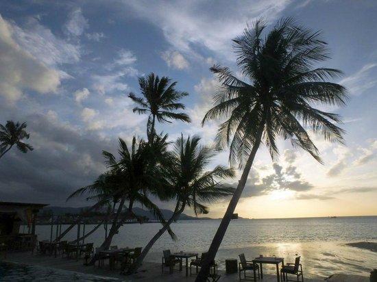 Tango Luxe Beach Villa: hotel public pool at sunset