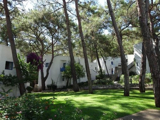 Club Med Kemer: Les Chambres