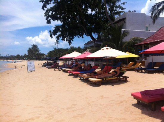 Hacienda Beach Restaurant: Beach view