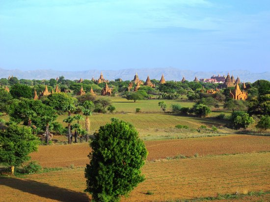 Temples de Bagan : Early morning view from the small chapel behind Dhammayangyi