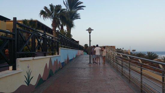 Occidental Jandia Playa: entrada trasera