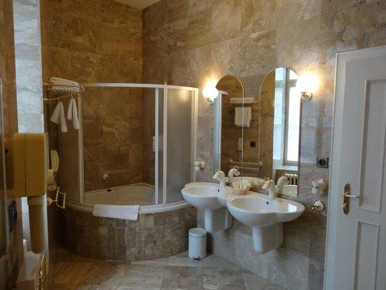 Hotel Dvorak: バスルーム