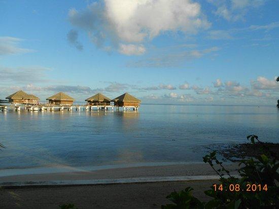 Royal Huahine : les bungalows sur pilotis