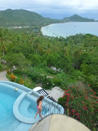 Monkey Flower Villas: view from the roof