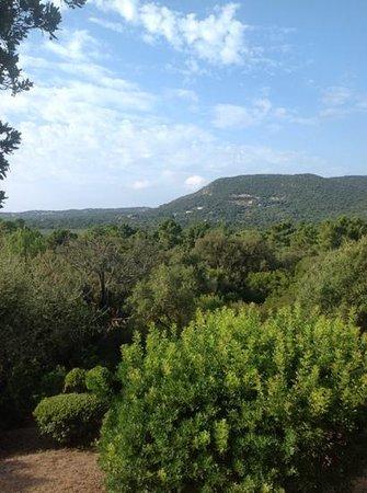 U Paesolu : le coline