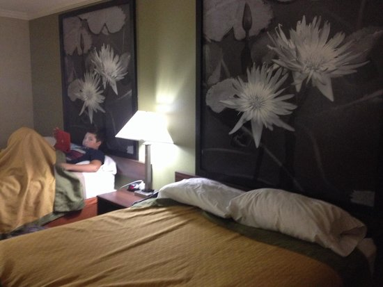 Super 8 Picayune: Great, clean and newly renovated room!