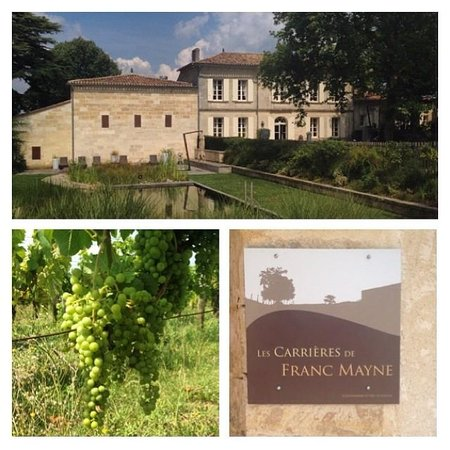 Le Relais de Franc Mayne: vingården