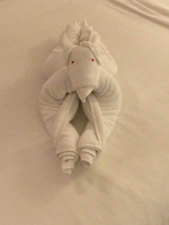 Vivanta by Taj - Malabar : towels in the room