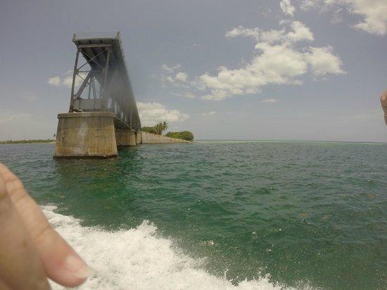 Looe Key (Florida Keys National Marine Sanctuary): old bridge
