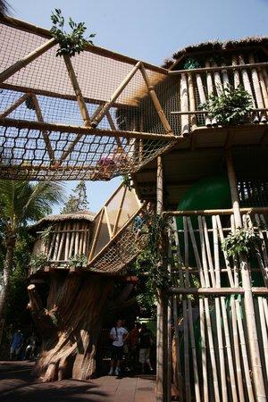 Loro Parque: Детская площадка