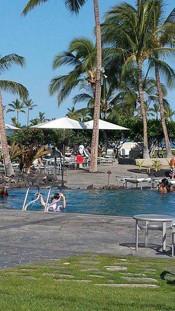Waikoloa Beach Marriott Resort & Spa: Pool View