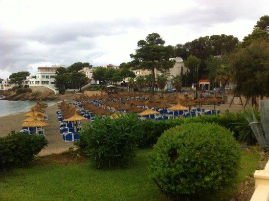 Universal Hotel Aquamarin: beach next door