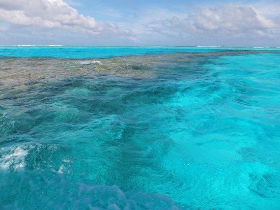 Black Pearl Charters: Lagoon cruise