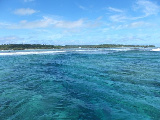 Black Pearl Charters: Outer reef