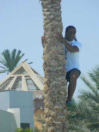 Rehana Royal Beach Resort & Spa: акводжин