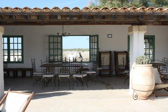 Hotel de Cacharel : Vue depuis la piscine