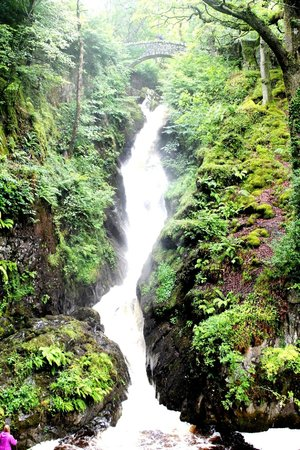 Lake District National Park Guided Walks - Walks to Inspire: Aira Force Waterfall
